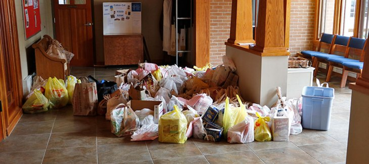 Food Bags for Calico Cat Food Pantry